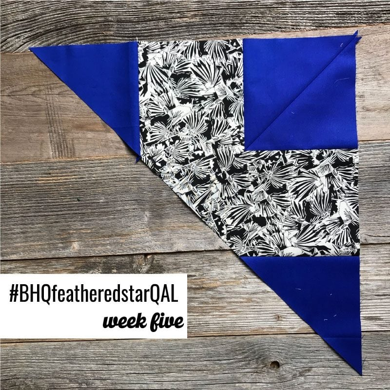 Feathered Star Quilt Along {Week 5 – Border Units}