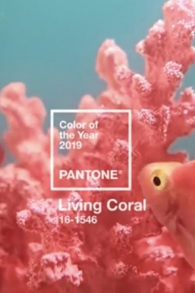 Pantone Quilt Challenge 2019 Winners